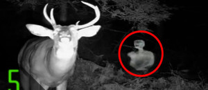 5 Creepiest Unexplained Trail Cam Photos