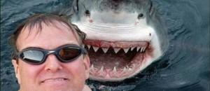 25 Most Dangerous Selfies Ever!